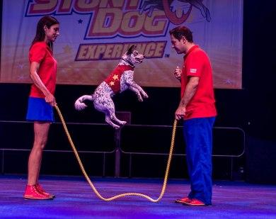 Crazy Confetti jumps rope